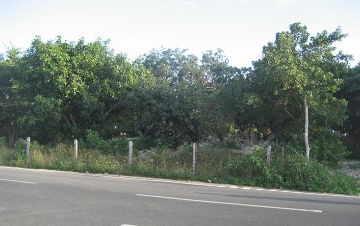 Foto de terreno comercial en renta en  , ejidal, solidaridad, quintana roo, 1665584 No. 02