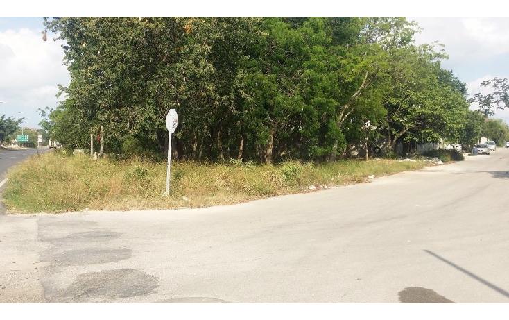 Foto de terreno habitacional en venta en  , ejidal, solidaridad, quintana roo, 2043977 No. 04