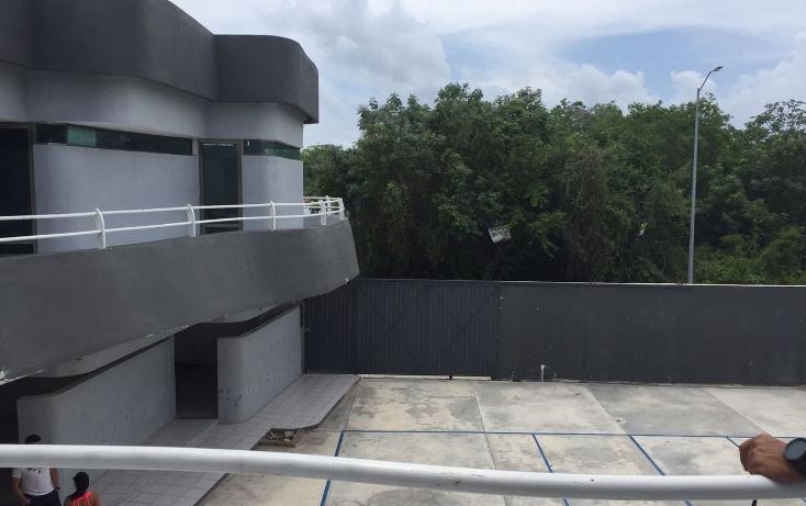 Foto de edificio en renta en  , ejidal, solidaridad, quintana roo, 3427818 No. 10