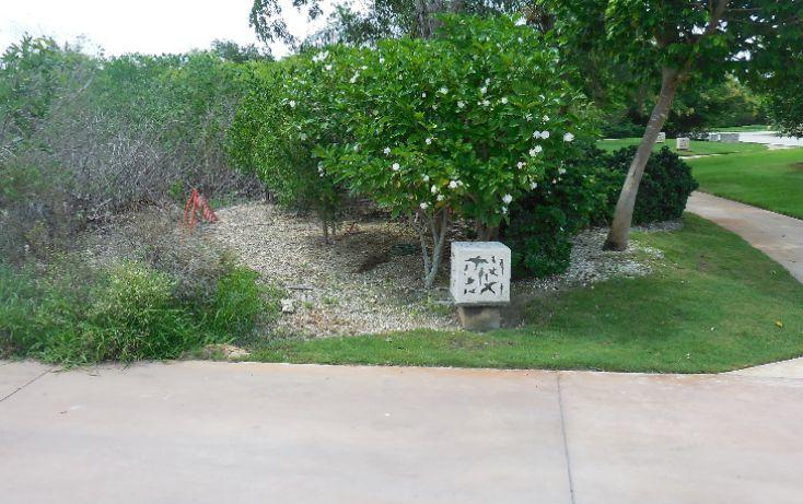 Foto de terreno habitacional en venta en, ejido de chuburna, mérida, yucatán, 1070593 no 05