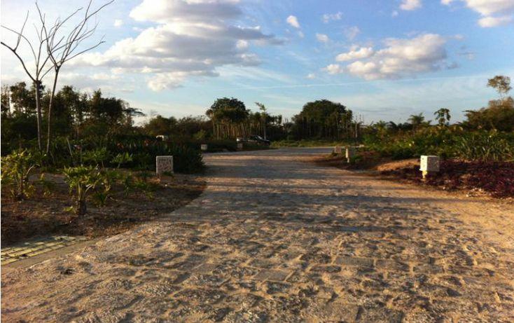 Foto de terreno habitacional en venta en, ejido de chuburna, mérida, yucatán, 1108653 no 05