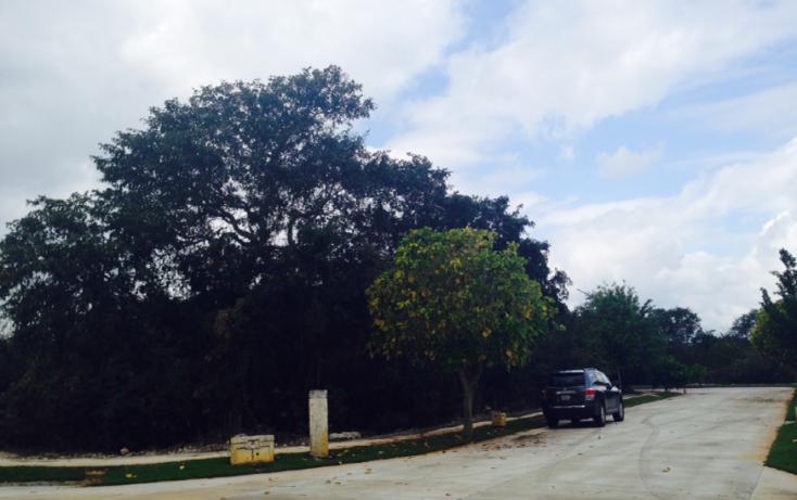 Foto de terreno habitacional en venta en, ejido de chuburna, mérida, yucatán, 1142069 no 01