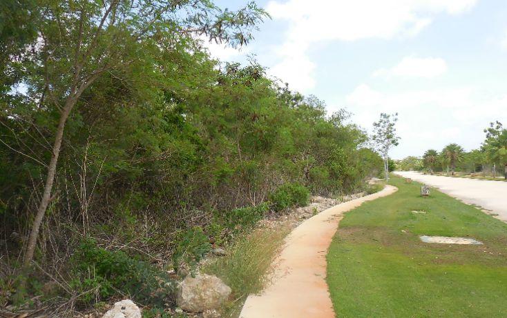 Foto de terreno habitacional en venta en, ejido de chuburna, mérida, yucatán, 1189063 no 08