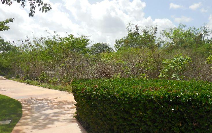 Foto de terreno habitacional en venta en, ejido de chuburna, mérida, yucatán, 1189063 no 10