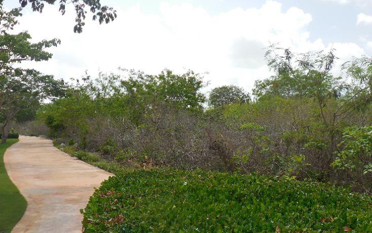 Foto de terreno habitacional en venta en, ejido de chuburna, mérida, yucatán, 1189063 no 11