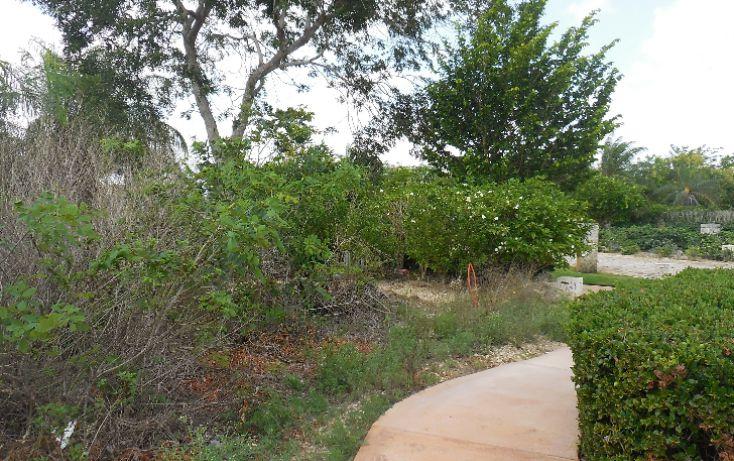 Foto de terreno habitacional en venta en, ejido de chuburna, mérida, yucatán, 1189063 no 12