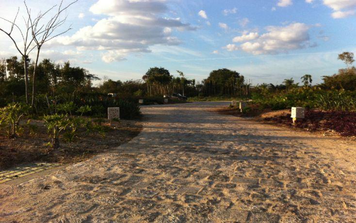 Foto de terreno habitacional en venta en, ejido de chuburna, mérida, yucatán, 1311413 no 07