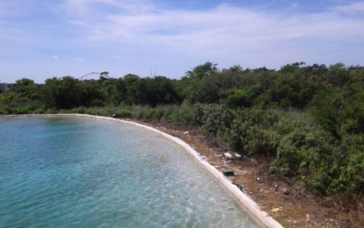Foto de terreno habitacional en venta en, ejido de chuburna, mérida, yucatán, 1645572 no 04