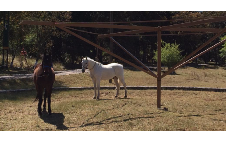 Foto de rancho en venta en  , ejido de jilotepec, jilotepec, m?xico, 1835714 No. 08