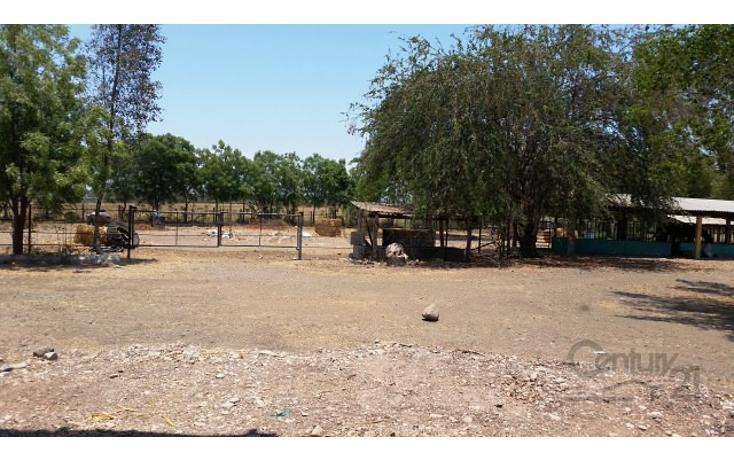 Foto de rancho en venta en  , el quemadito, culiacán, sinaloa, 1697592 No. 17