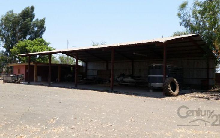 Foto de rancho en venta en ejido el quemadito sn, el quemadito, culiacán, sinaloa, 1697592 no 18