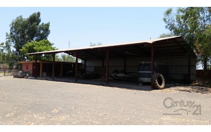 Foto de rancho en venta en  , el quemadito, culiacán, sinaloa, 1697592 No. 18