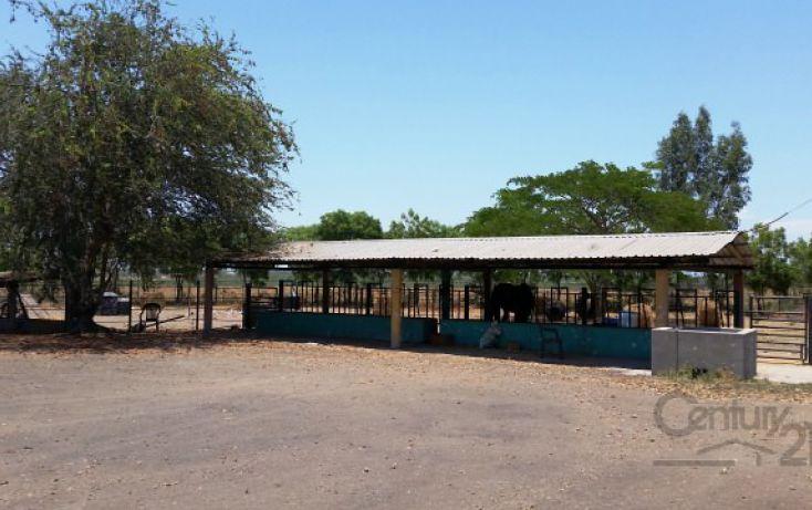 Foto de rancho en venta en ejido el quemadito sn, el quemadito, culiacán, sinaloa, 1697592 no 21