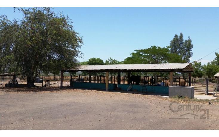 Foto de rancho en venta en  , el quemadito, culiacán, sinaloa, 1697592 No. 21