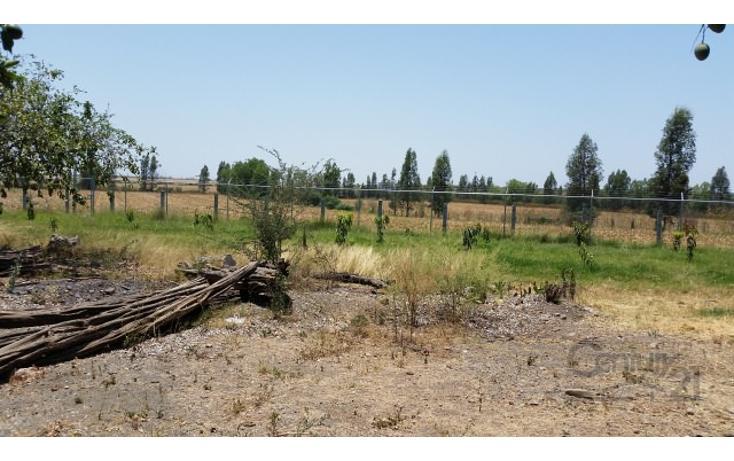 Foto de rancho en venta en  , el quemadito, culiacán, sinaloa, 1697592 No. 28