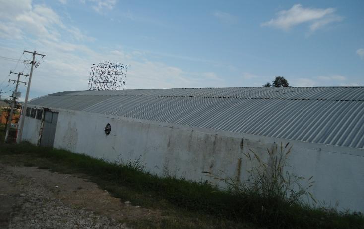 Foto de nave industrial en venta en  , ejido emiliano zapata, xalapa, veracruz de ignacio de la llave, 1260375 No. 04