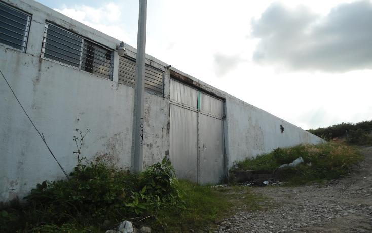 Foto de nave industrial en renta en  , ejido emiliano zapata, xalapa, veracruz de ignacio de la llave, 1260377 No. 05