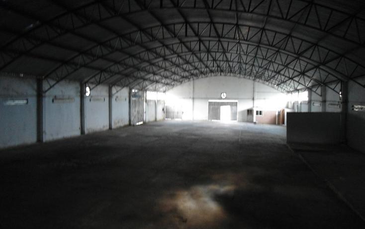 Foto de nave industrial en renta en  , ejido emiliano zapata, xalapa, veracruz de ignacio de la llave, 1260377 No. 06