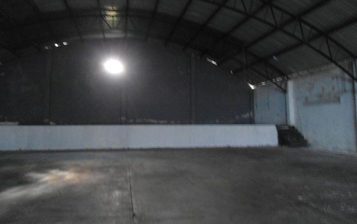 Foto de nave industrial en renta en  , ejido emiliano zapata, xalapa, veracruz de ignacio de la llave, 1260377 No. 14