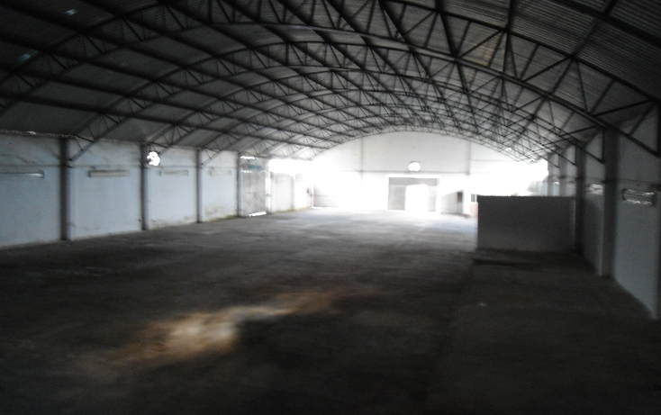 Foto de nave industrial en renta en  , ejido emiliano zapata, xalapa, veracruz de ignacio de la llave, 1260377 No. 17