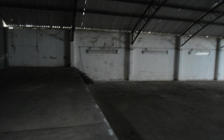 Foto de nave industrial en renta en  , ejido emiliano zapata, xalapa, veracruz de ignacio de la llave, 1260377 No. 18