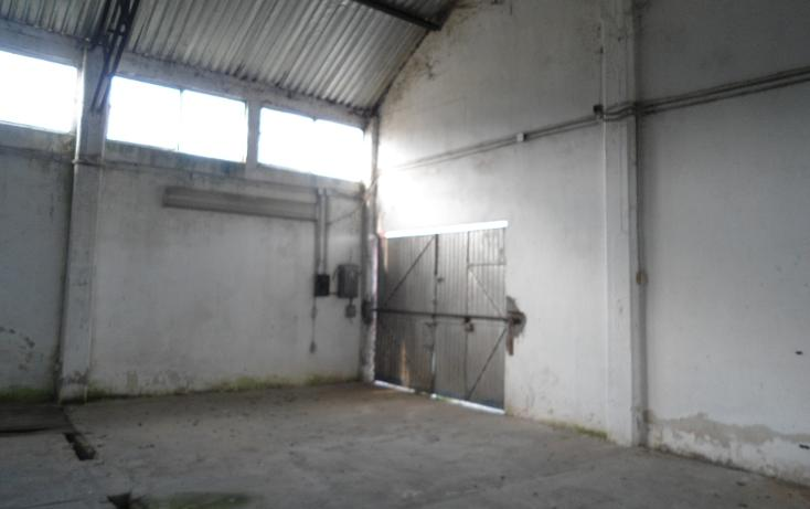 Foto de nave industrial en renta en  , ejido emiliano zapata, xalapa, veracruz de ignacio de la llave, 1260377 No. 20