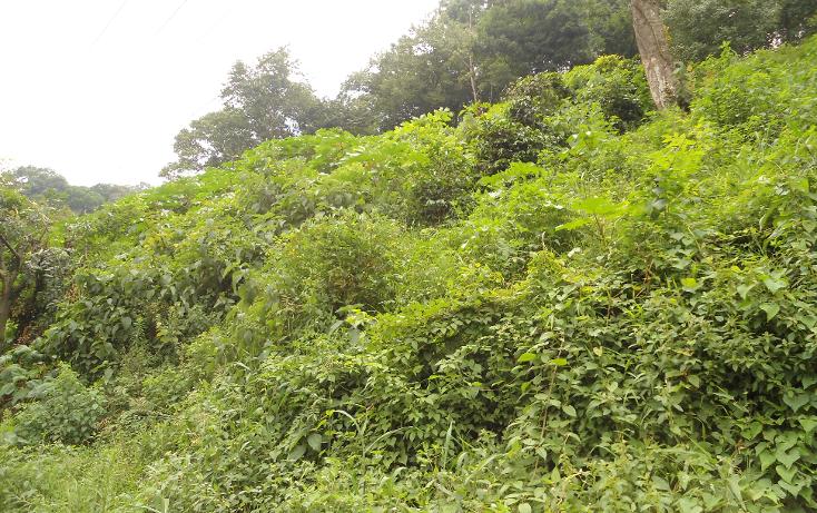 Foto de terreno habitacional en venta en  , ejido emiliano zapata, xalapa, veracruz de ignacio de la llave, 1290459 No. 03
