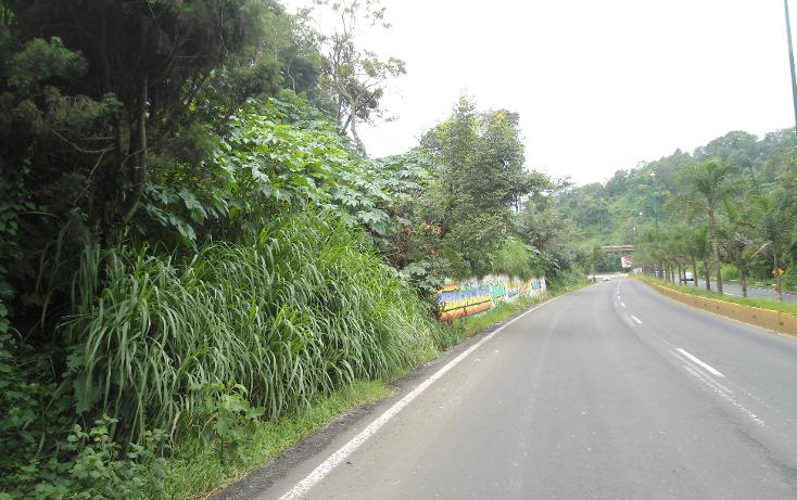 Foto de terreno habitacional en venta en  , ejido emiliano zapata, xalapa, veracruz de ignacio de la llave, 1290459 No. 06