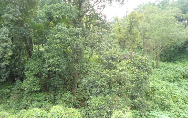 Foto de terreno habitacional en venta en  , ejido emiliano zapata, xalapa, veracruz de ignacio de la llave, 1290459 No. 09