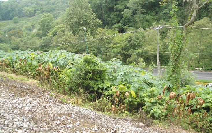 Foto de terreno habitacional en venta en  , ejido emiliano zapata, xalapa, veracruz de ignacio de la llave, 1290459 No. 11
