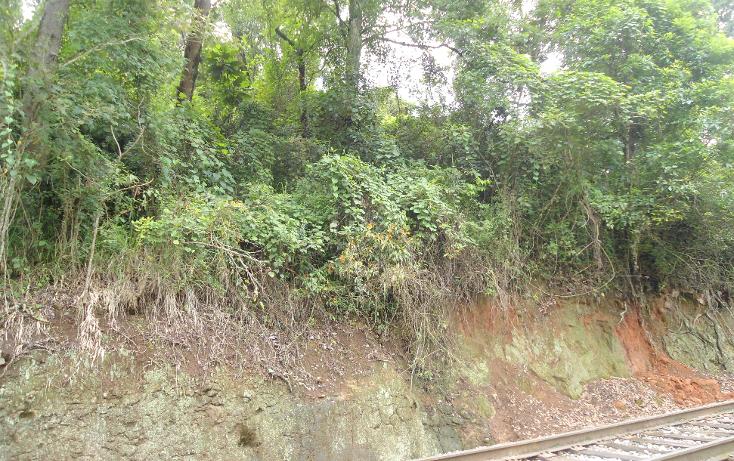 Foto de terreno habitacional en venta en  , ejido emiliano zapata, xalapa, veracruz de ignacio de la llave, 1290459 No. 15