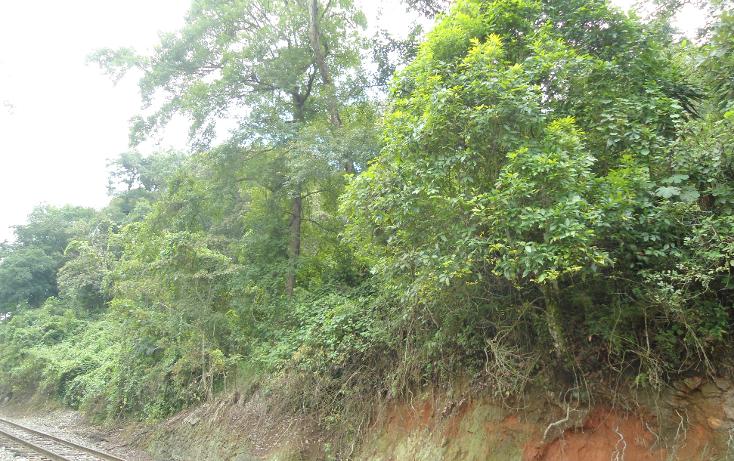 Foto de terreno habitacional en venta en  , ejido emiliano zapata, xalapa, veracruz de ignacio de la llave, 1290459 No. 18