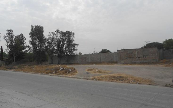 Foto de terreno habitacional en renta en  , ejido francisco villa sur, tijuana, baja california, 1196399 No. 06