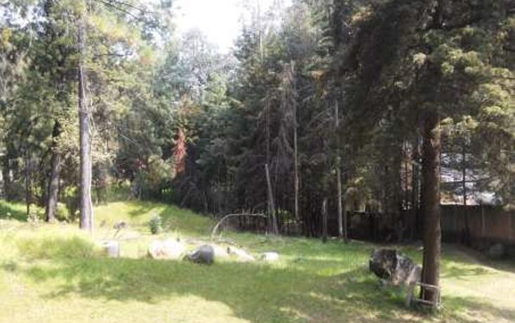 Foto de terreno comercial en venta en  , ejido la campana, ocoyoacac, méxico, 1435593 No. 11