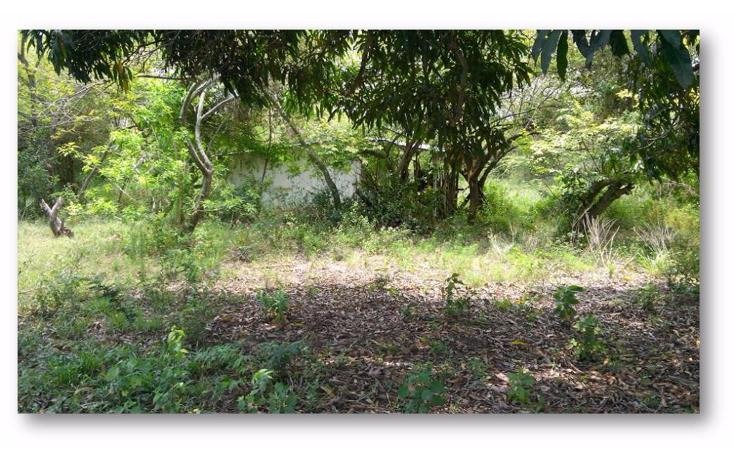 Foto de terreno habitacional en venta en  , ejido la pedrera, altamira, tamaulipas, 1088311 No. 06