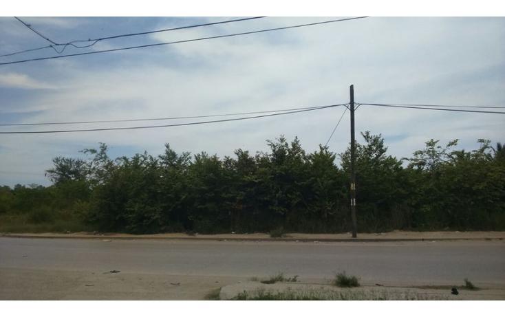 Foto de terreno habitacional en venta en  , ejido la pedrera, altamira, tamaulipas, 1170021 No. 02