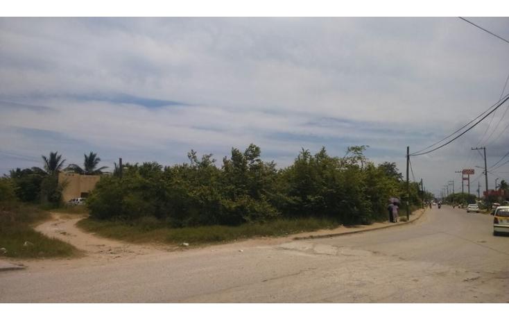 Foto de terreno habitacional en venta en  , ejido la pedrera, altamira, tamaulipas, 1170021 No. 03