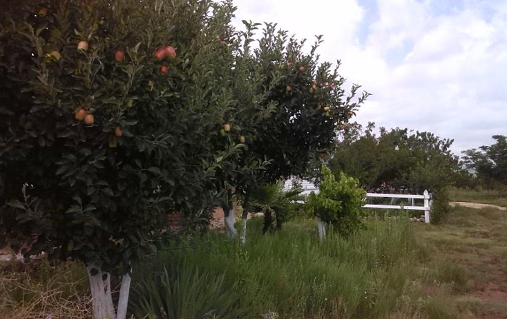 Foto de rancho en venta en ejido la providencia 00 entre ejido derramadero y ejido san juan de la vaqueria 00, la providencia, saltillo, coahuila de zaragoza, 883819 No. 02