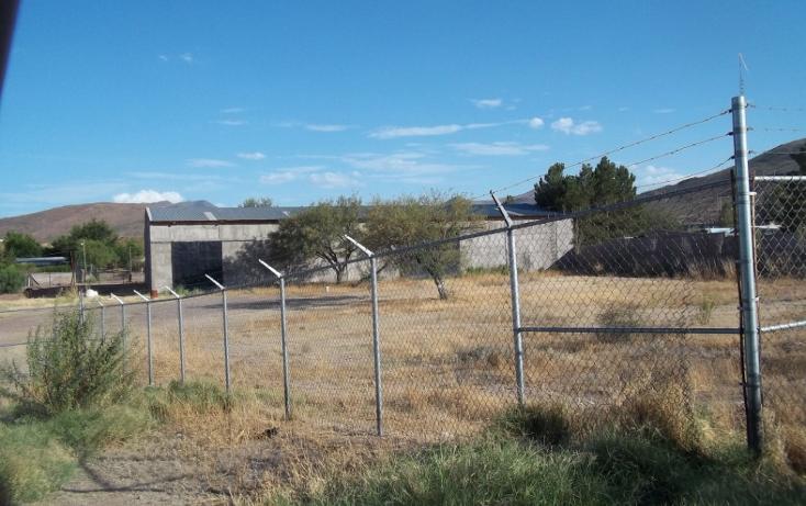 Foto de bodega en renta en  , ejido labor de terrazas, chihuahua, chihuahua, 1100239 No. 01
