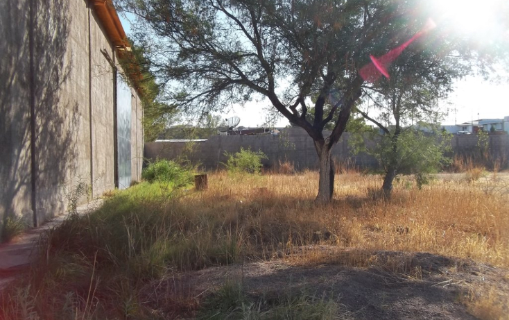 Foto de bodega en renta en  , ejido labor de terrazas, chihuahua, chihuahua, 1100239 No. 06