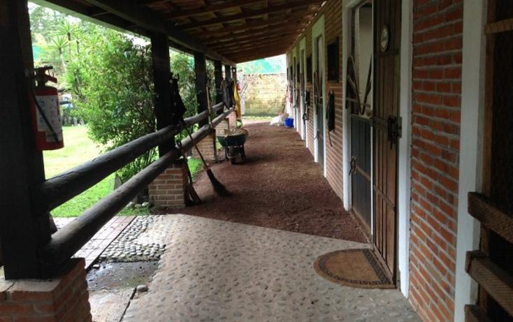 Foto de terreno habitacional en venta en  , santa ana jilotzingo, jilotzingo, méxico, 1716544 No. 08