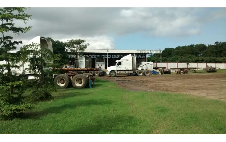 Foto de terreno comercial en renta en  , ejido ricardo flores magón, altamira, tamaulipas, 1515344 No. 02