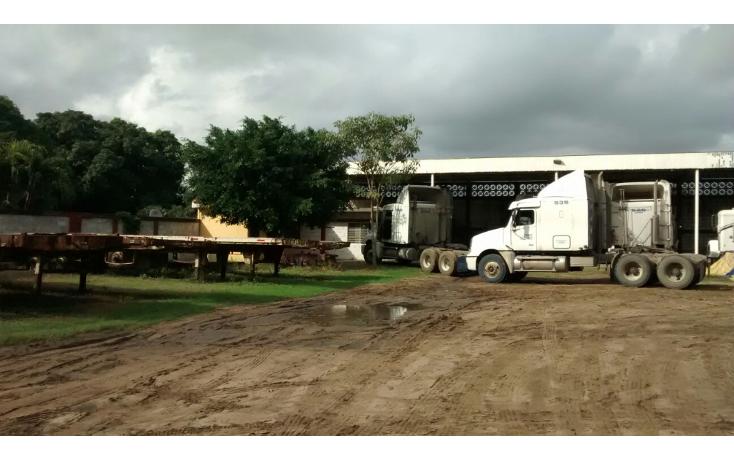Foto de terreno comercial en renta en  , ejido ricardo flores magón, altamira, tamaulipas, 1515344 No. 04