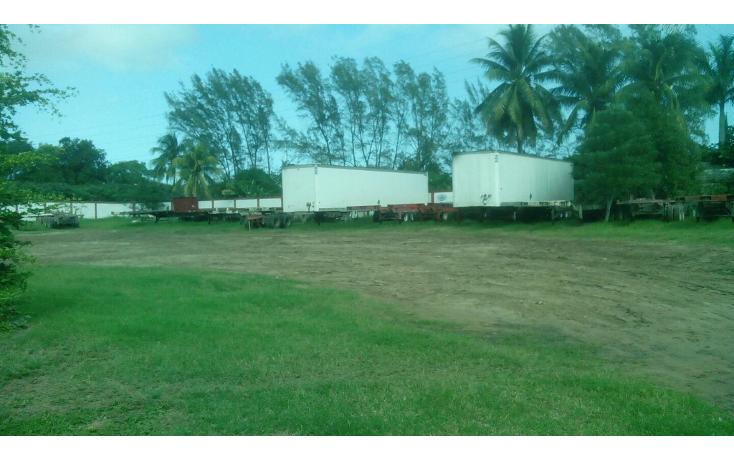 Foto de terreno comercial en renta en  , ejido ricardo flores magón, altamira, tamaulipas, 1515344 No. 07