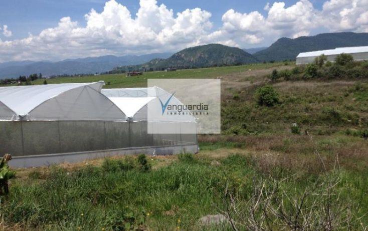 Foto de terreno comercial en venta en ejido tonatico, tonatico, tonatico, estado de méxico, 988215 no 06
