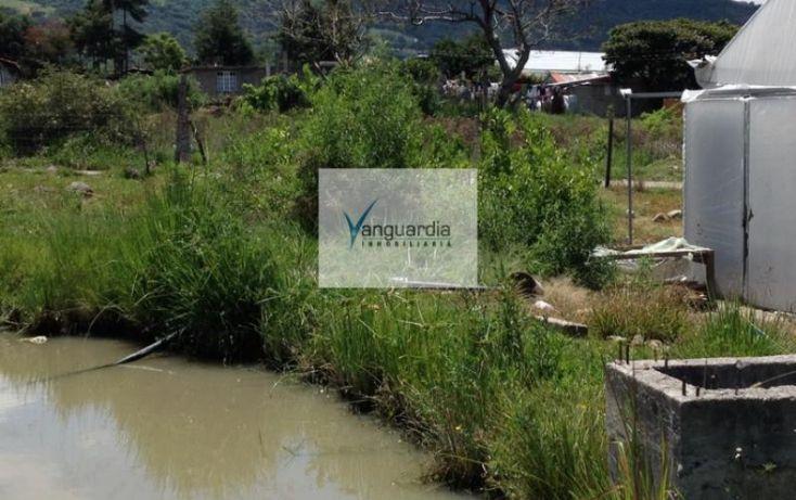 Foto de terreno comercial en venta en ejido tonatico, tonatico, tonatico, estado de méxico, 988215 no 08