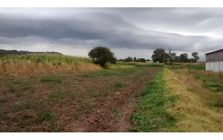 Foto de terreno habitacional en venta en  , ejido totolac, totolac, tlaxcala, 1081147 No. 02