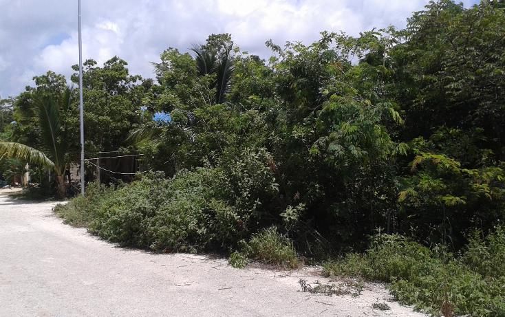 Foto de terreno habitacional en venta en  , ejido, tulum, quintana roo, 1085731 No. 03