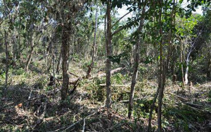 Foto de terreno habitacional en venta en, ejido, tulum, quintana roo, 778271 no 07