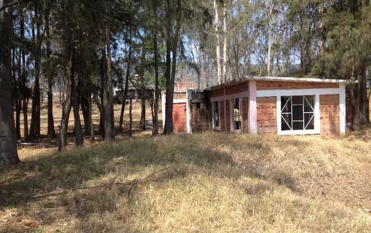 Foto de terreno habitacional en venta en  , el abrojo, ixtapan de la sal, méxico, 1941612 No. 02